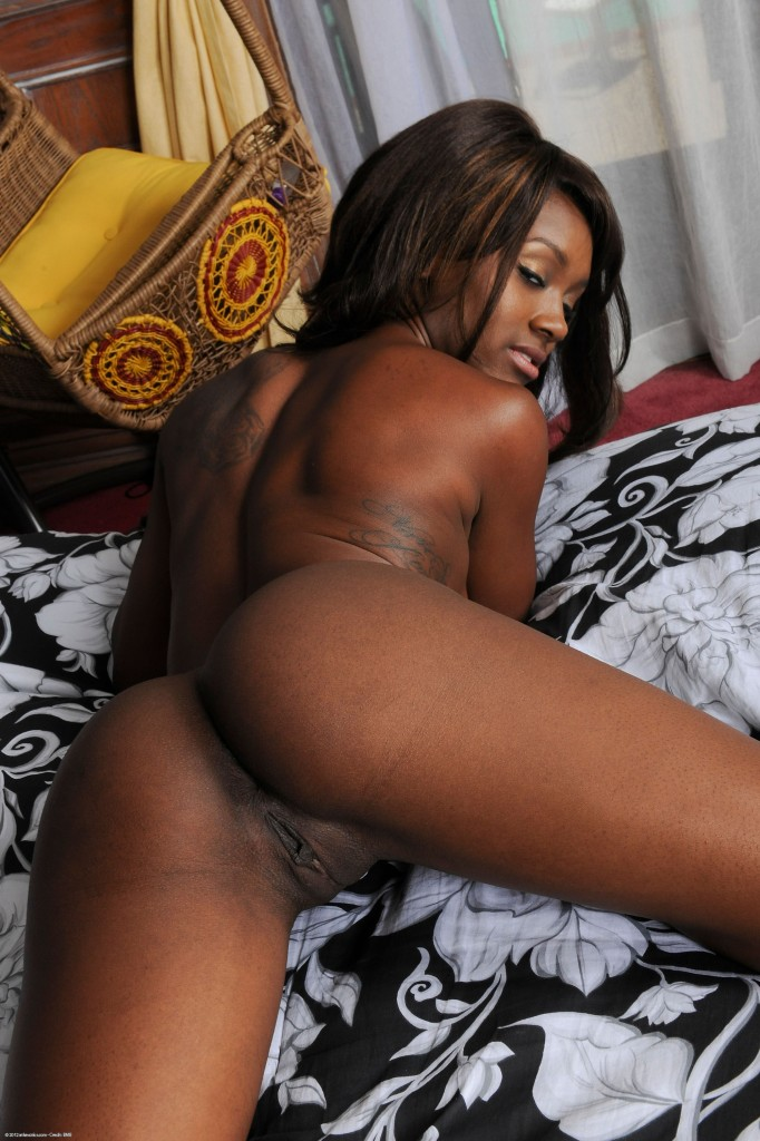 Ebony sierra banxxx atk properties turns
